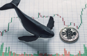"""Bitcoin Bears Are """"Emotionally Broken"""" as Whales Stack Massive Buy Orders"""