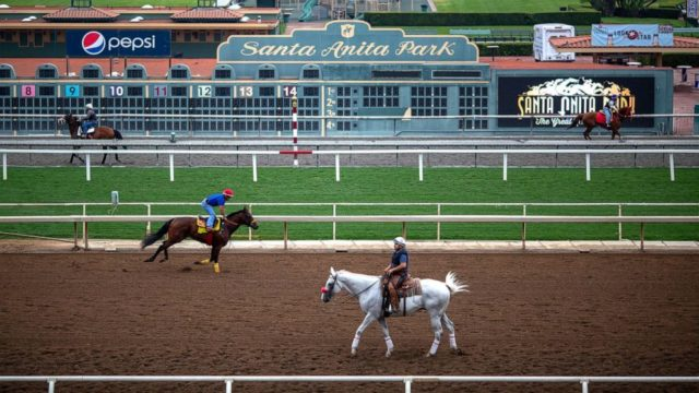 2 horses euthanized in 2 days at Santa Anita Park
