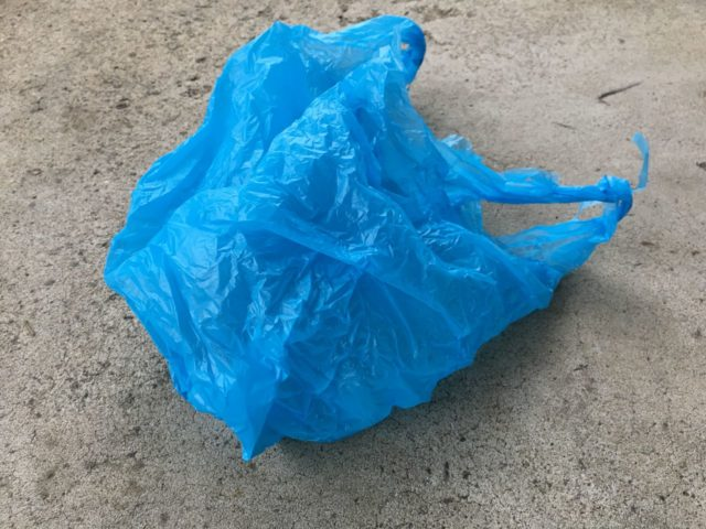 NY delays plastic bag ban enforcement by one month