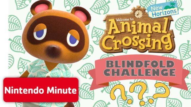Animal Crossing: New Horizons BLINDFOLD Challenge