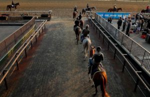 27 indicted in scheme to illegally dope racehorses in New York