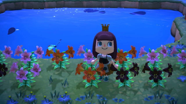 Animal Crossing: New Horizons Hybrid Flowers Guide –