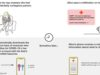 Apple and Google detail bold and ambitious plan to track COVID-19 at scale