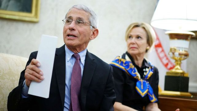 Fauci to warn Senate of 'needless suffering and death' if states reopen too soon: Report