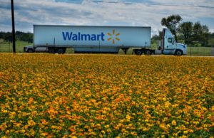 Walmart Plus takes on Amazon Prime with $98-a-year membership fee
