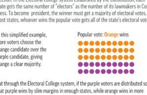 Vision 2020: Electoral College vs popular vote in America
